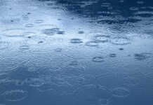 ICW Group's image of rain drops.